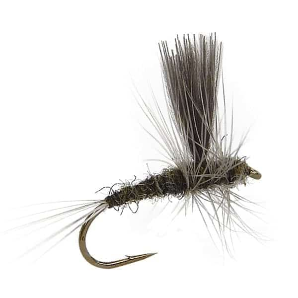 fly fishing flies, trout flies, bwo trout fly, blue-winged olive trout fly patterns, blue-winged olive trout pattern, small stream patterns, best july fly fishing flies
